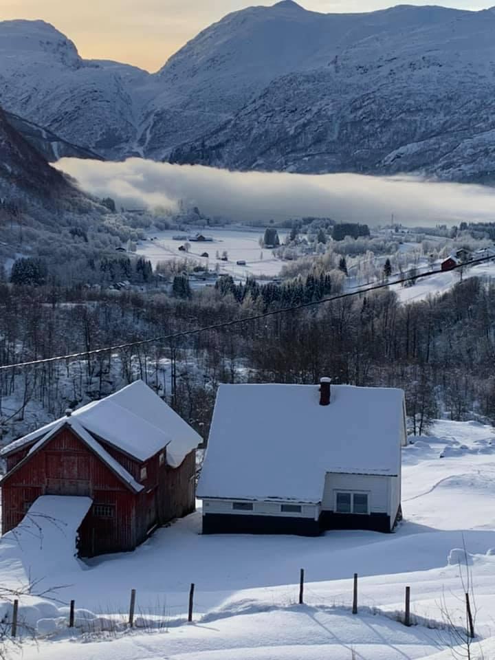 Frostrøyk 25. januar 2021 - Foto: Wenche Tindeland